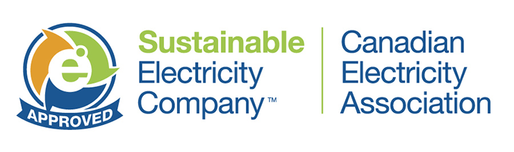Sustainable Electricity Company